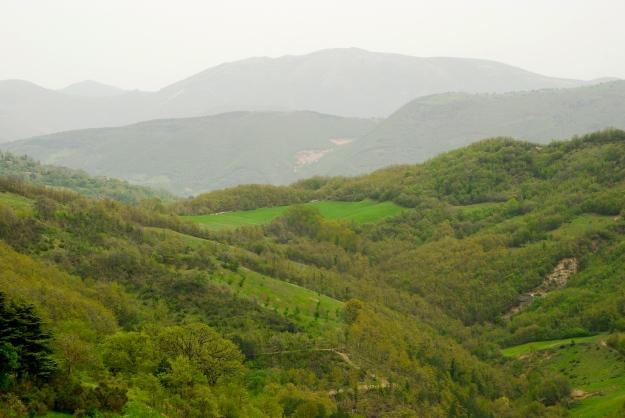 Armenzano View